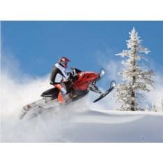 Катание на 1-местном снегоходе для одного (30 минут)