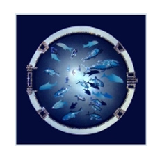 Картина с кристаллами Swarovski «Иллюминатор»