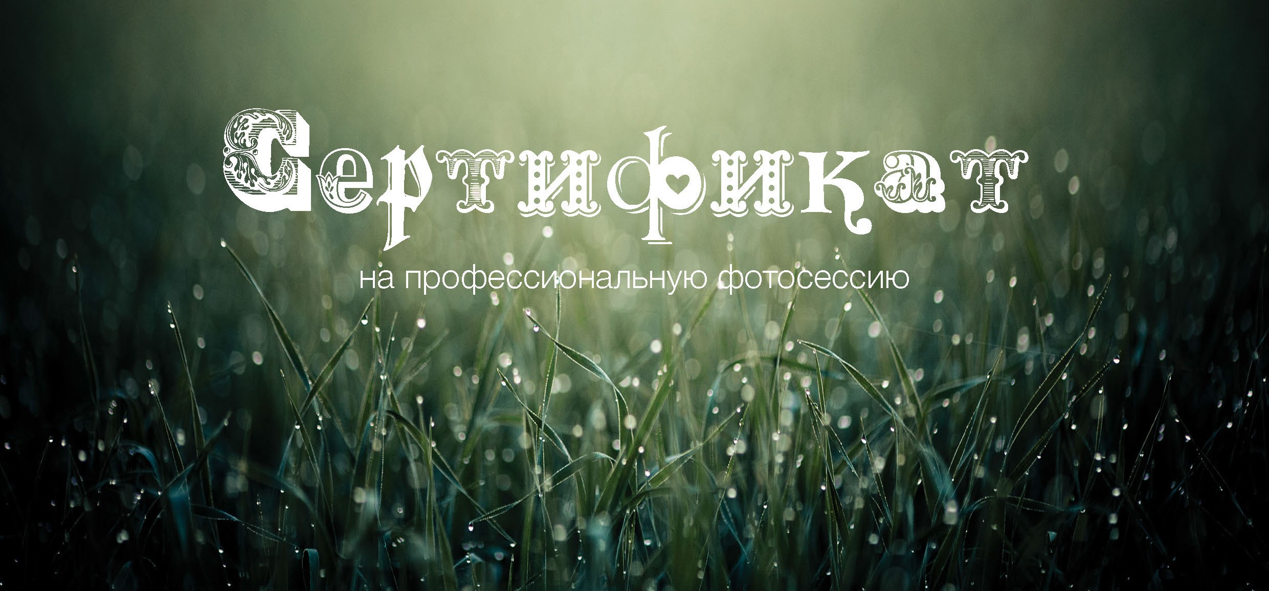 Сертификат на фотосессии в Павловске