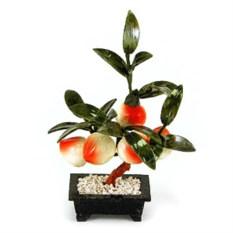 Бонсай (22 см) Персик (дерево счастья)