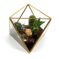 Интерьерное украшение Флорариум, размер 16 х 13 см