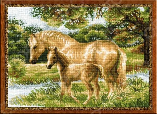 Набор для вышивания Риолис Лошадь с жеребёнком