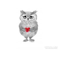 Женская футболка Owl
