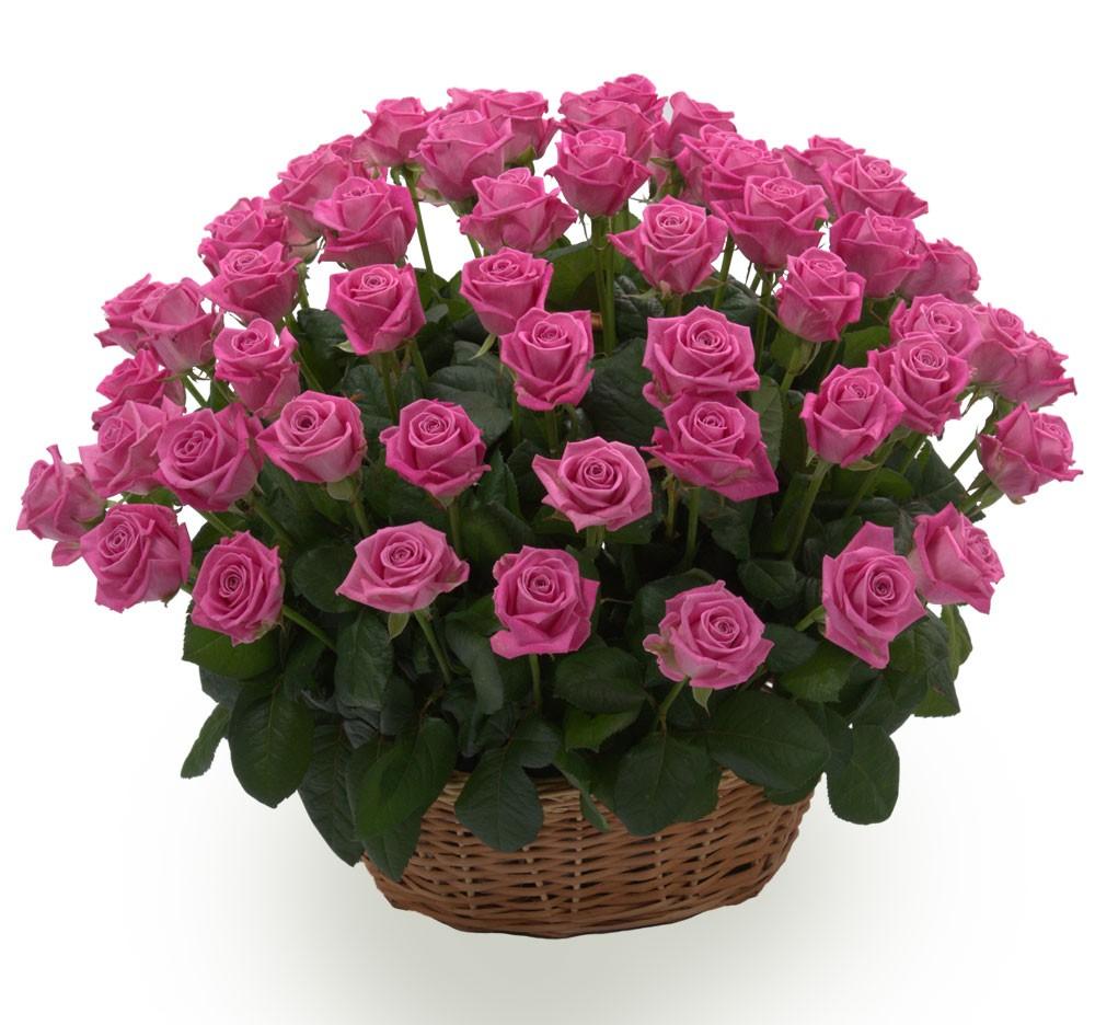 Корзина из 71 розы