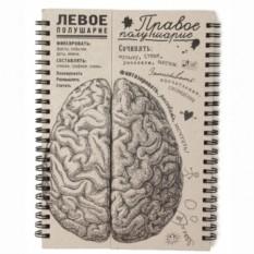 Блокнот Мозг. Правое полушарие