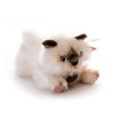 Мягкая игрушка Aurora Персидская кошка 25 см