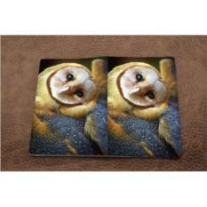 Обложка на паспорт «Совушка»
