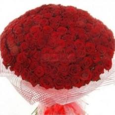 Букет из 201 розы (50 см)