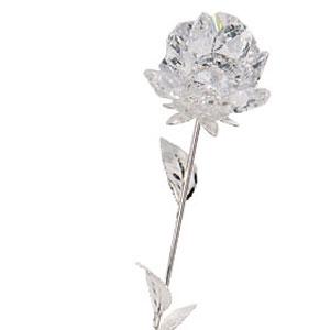 Роза «Ля Франс»