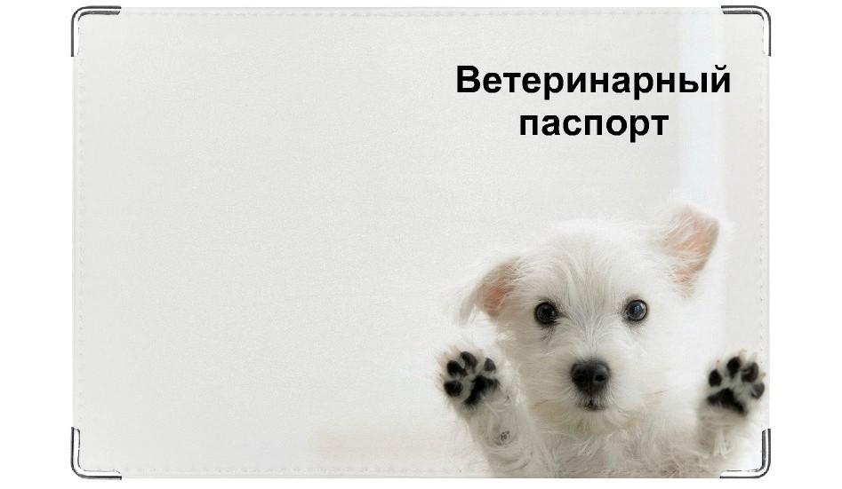 Обложка на ветеринарный паспорт Впустите!