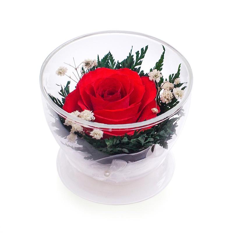 Цветы в стекле: Композиция из красной розы