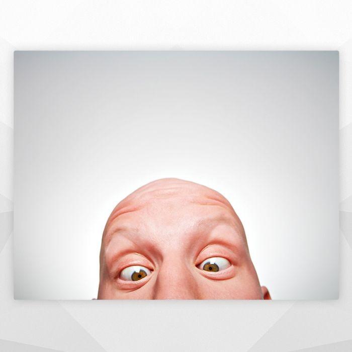 Постер Любопытный гость