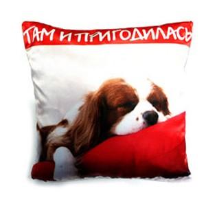 Подушка «Где заснула, там и пригодилась»