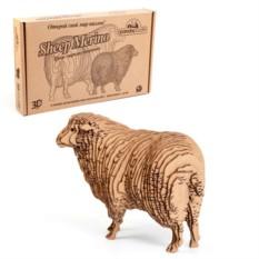 3D-пазл «Овца»