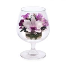 Цветочная композиция из натуральных орхидей