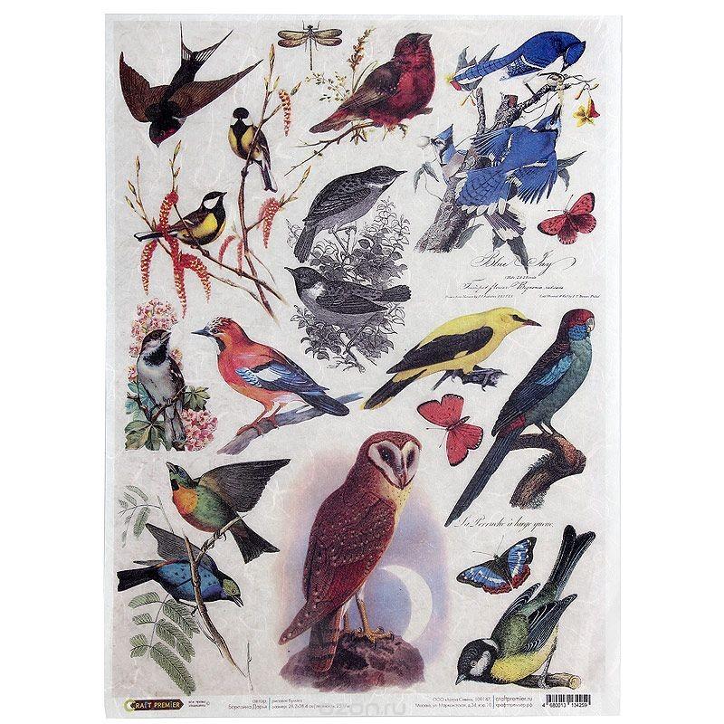 Рисовая бумага для декупажа Craft Premier Птички, 28,2 см х 38,4 см