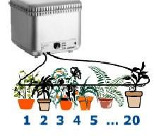 Система автополива комнатныx растений Оазис