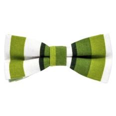 Галстук-бабочка (зеленая)
