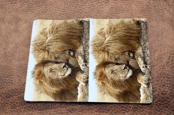 Обложка на паспорт «Милые львы»