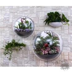 Красивый настенный флорариум