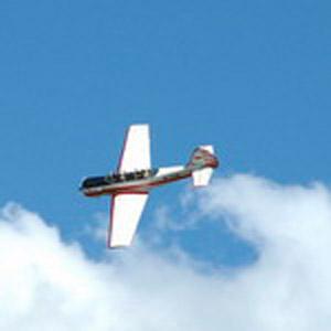 Урок  высшего пилотажа на ЯК-52