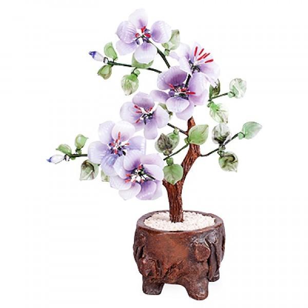 Бонсай Сакура 18*25 см - дерево счастья