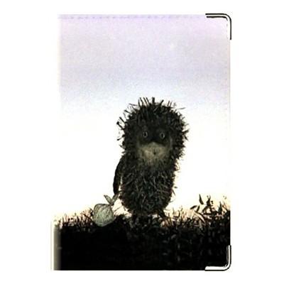 Обложка паспорта «Ёжик»