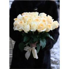 Букет из кремовых роз Эквадор (25 штук)