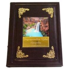 Книга Энциклопедия чудес природы