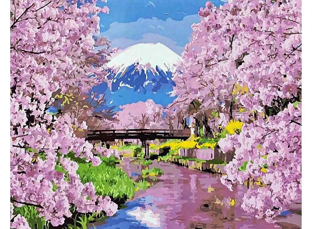 Картины по номерам «Цветущая сакура»