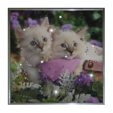 Картина с кристаллами Swarovski Котята