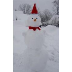 Набор «Настоящий снеговик»