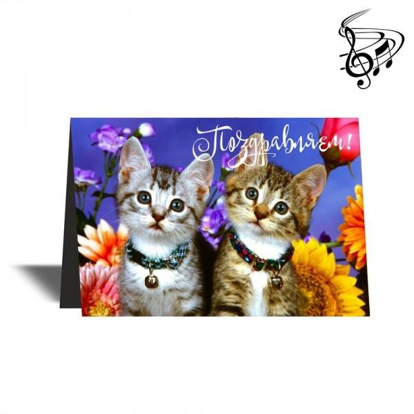 Музыкальная открытка авито