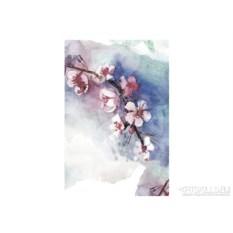 Женская футболка Cherry blossoms