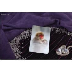 Обложка для паспорта / автодокументов Две обезьяны под снегом