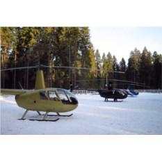 Сертификат Вертолетная экскурсия «Зеленое кольцо Москвы»