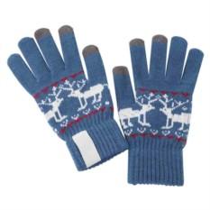 Синие сенсорные перчатки Raindeer