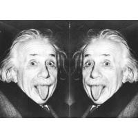 Визитница Энштейн