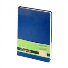 Недатированный синий ежедневник Megapolis A5