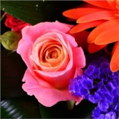 Буке цветов Радужный
