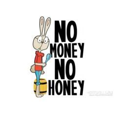 Женская футболка No Money No Honey