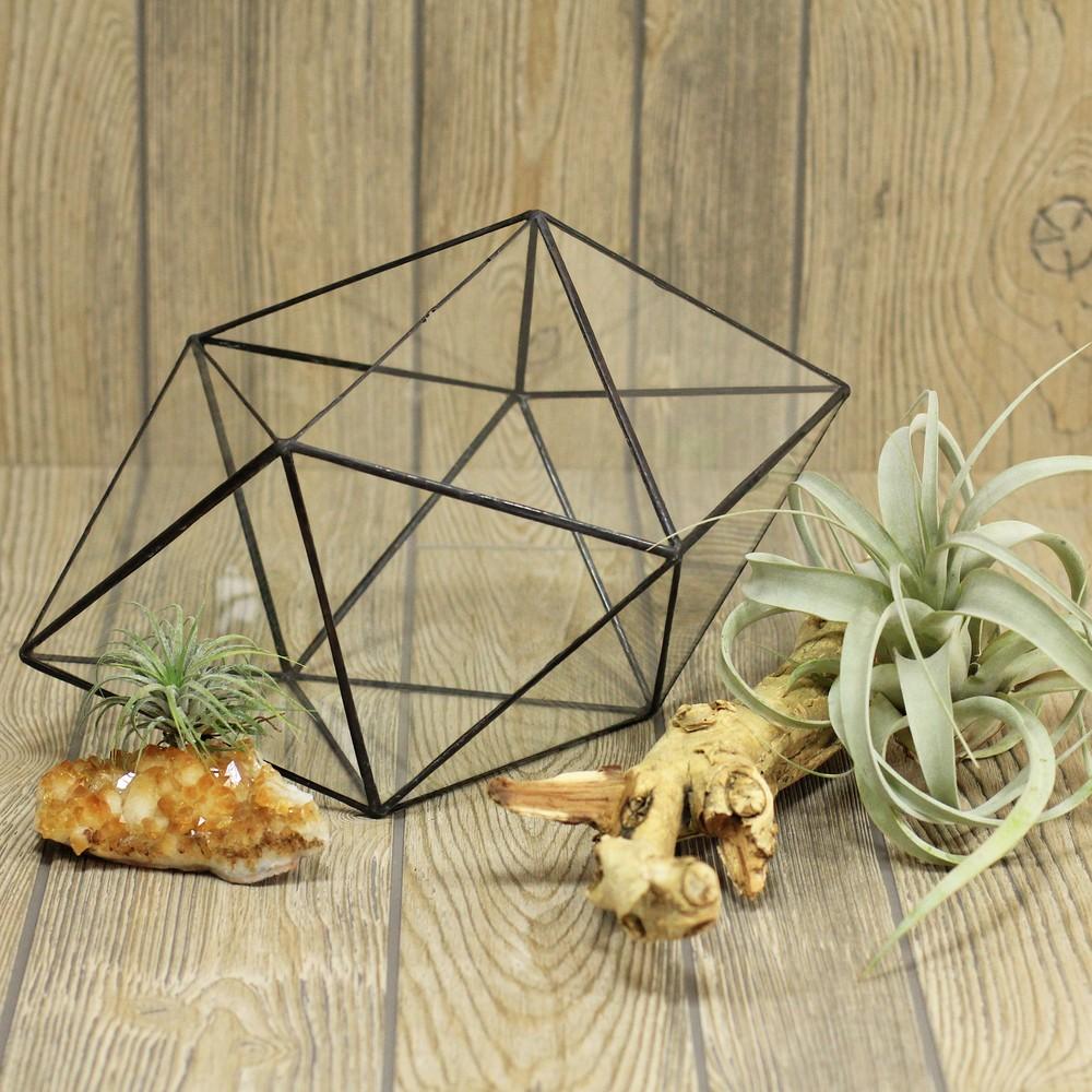 Геометрический террариум Кристалл