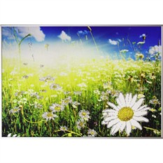 Картина с кристаллами Swarovski Ромашковое поле