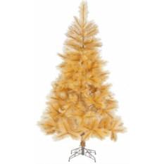 Оранжевая елка Douglas Gold Pine