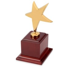 Золотая награда Звезда