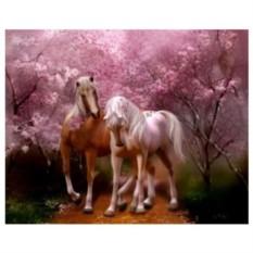 Картина-раскраска по номерам на холсте Кавалер