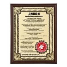 Плакетка Диплом лучшему руководителю