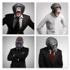 Модульная картина Деловые обезьяны