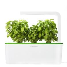 Зеленый набор для выращивания Умный сад. Базилик