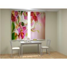 Фотошторы Розовые орхидеи